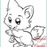 Gambar Sketsa Anak Kucing