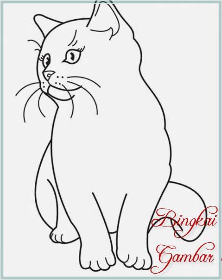 Gambar Sketsa Gambar Kucing