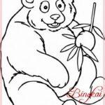 Gambar Sketsa Hewan Panda
