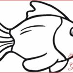 Gambar Sketsa Ikan Hitam Putih
