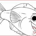 Contoh Gambar Sketsa Ikan Yang Mudah Bingkaigambar Com