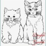Gambar Sketsa Kucing Berdiri