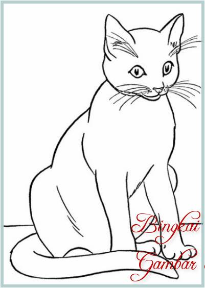 Gambar Sketsa Kucing Duduk