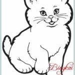 Gambar Sketsa Kucing Hitam Putih