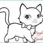 Gambar Sketsa Kucing Imut
