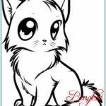 Gambar Sketsa Kucing Lucu