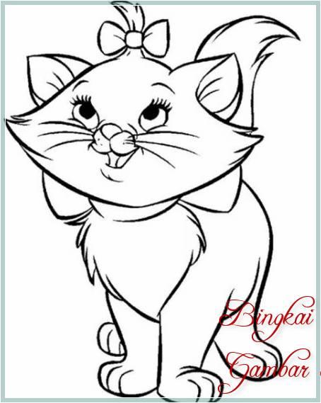 Sketsa Bunga Kumis Kucing