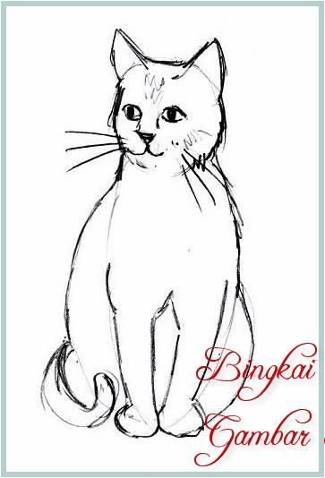 38 Gambar Sketsa Kucing Lucu Imut Dan Keren 2019
