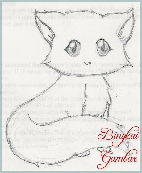 Sketsa Kucing Dari Pensil