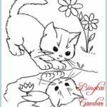 Sketsa Kucing Hitam Putih