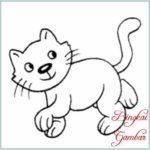 Sketsa Kucing Sederhana
