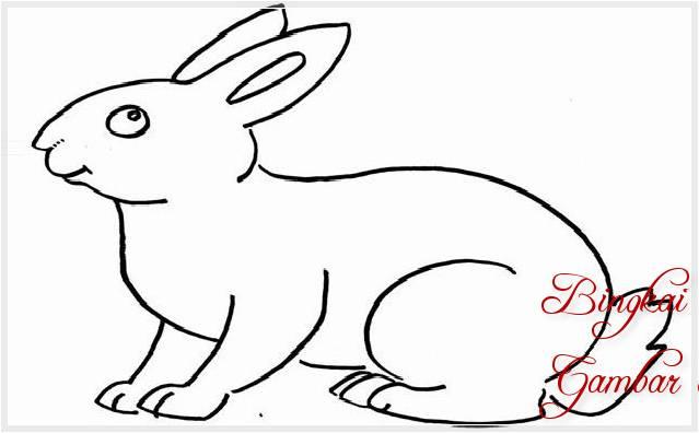 Sketsa Menggambar Kelinci
