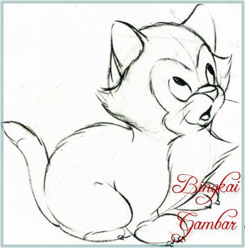 Sketsa Menggambar Kucing