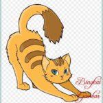 Sketsa Warna Kucing