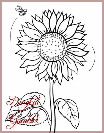 Gambar Bunga Matahari Simple