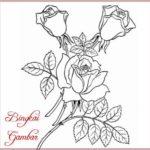 Gambar Bunga Sederhana Dari Pensil