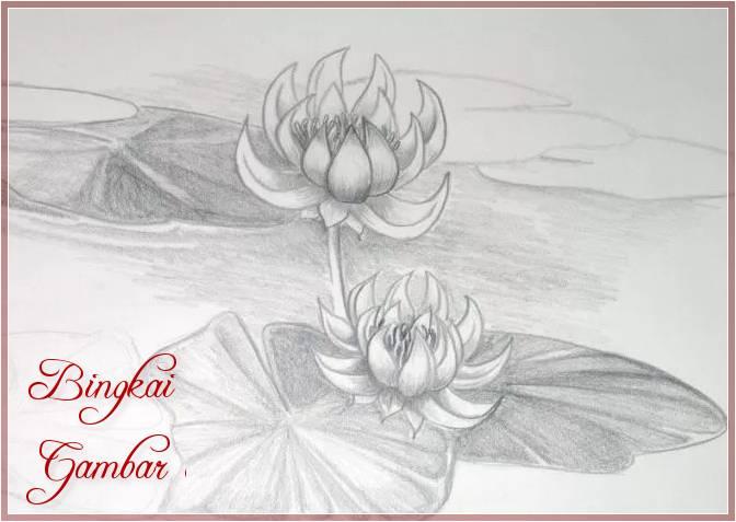 Gambar Bunga Sederhana Menggunakan Pensil