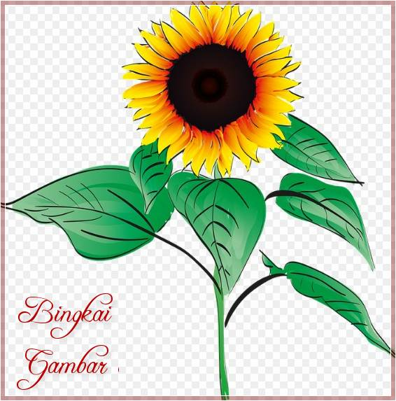 Gambar Bunga Simple Berwarna