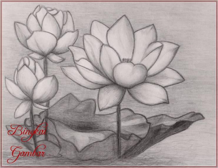 Gambar Bunga Simple Cantik