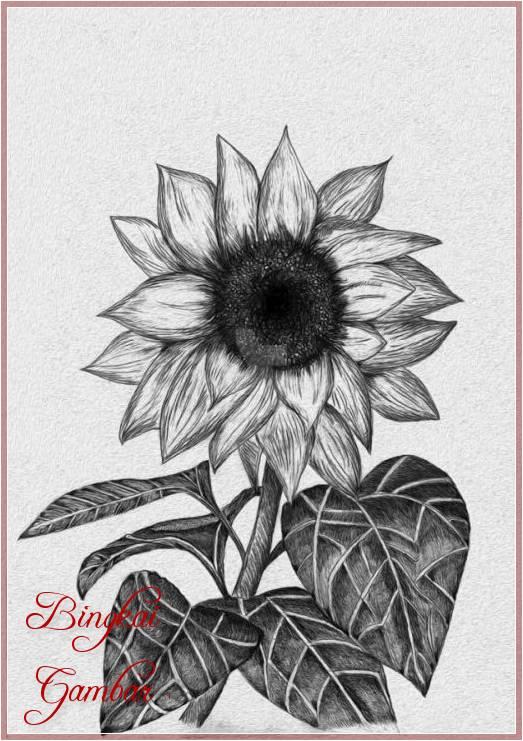 Gambar Bunga Simple Hitam Putih