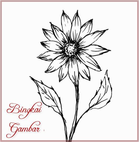 Gambar Bunga Simple Tapi Bagus