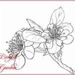 Gambar Gambar Bunga Yang Simple