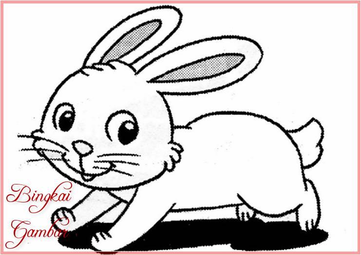 Gambar Kartun Binatang Comel