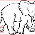 Gambar Kartun Binatang Gajah