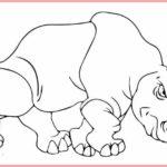 Gambar Kartun Hewan Harimau Bingkaigambarcom