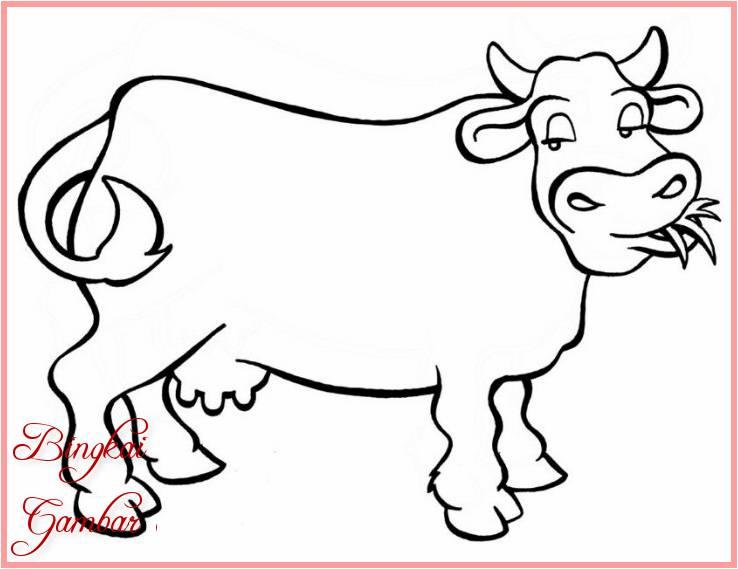 Gambar Kartun Hewan Herbivora