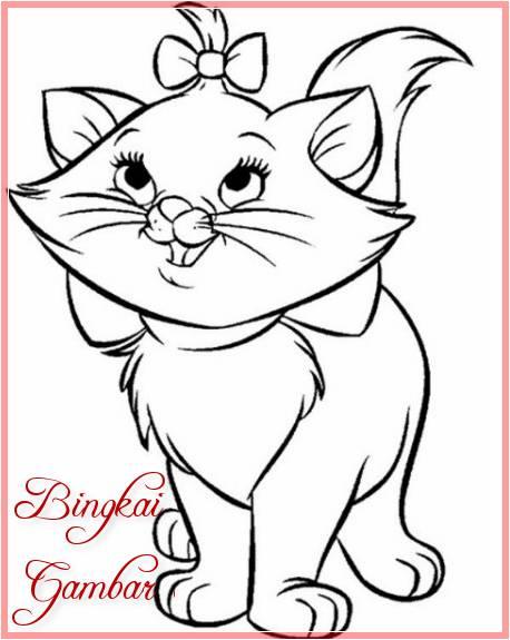 Gambar Kartun Hewan Kucing