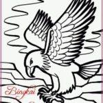 Gambar Sketsa Burung Elang Terbaru