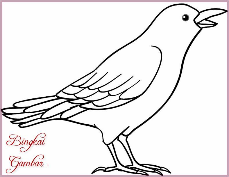 9000 Koleksi Gambar Hewan Sketsa Burung Gratis Terbaik