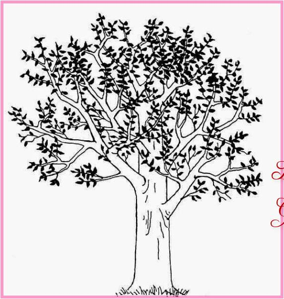 Gambar Sketsa Pohon Jeruk Terbaru Bingkaigambarcom