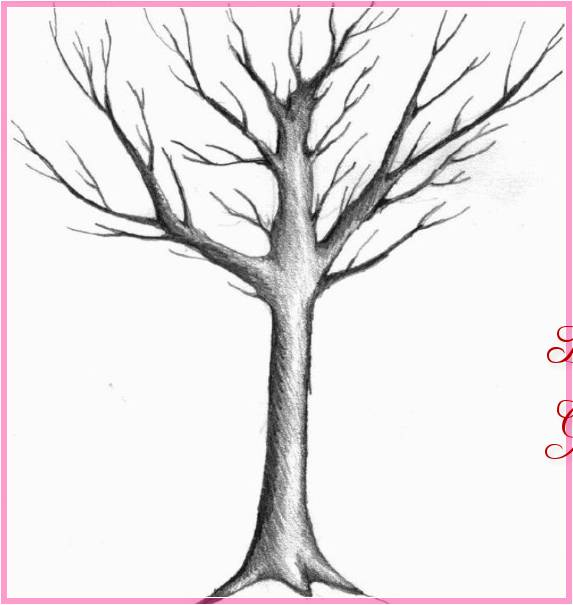 Gambar Sketsa Pohon Kering Terbaru