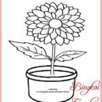 Sketsa Bunga Teratai Dalam Pot Terbaik Bingkaigambarcom