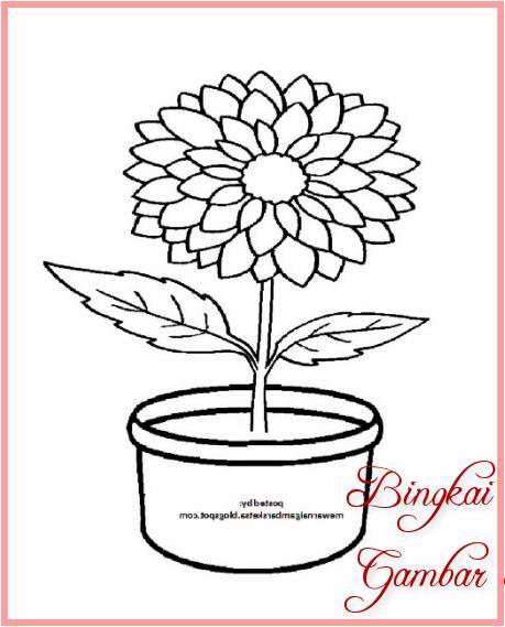 Sketsa Bunga Teratai Dalam Pot Terbaik