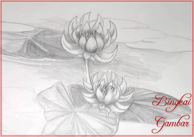 Sketsa Bunga Teratai Kuncup Terbaik