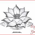 Sketsa Bunga Teratai Mekar Terbaik