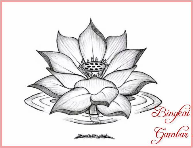 18 Gambar Sketsa Bunga Teratai Terbaik 2019 Bingkaigambar Com
