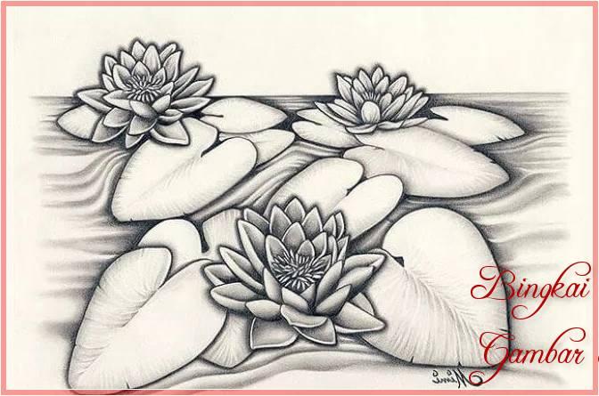 Sketsa Bunga Teratai Sederhana Terbaik