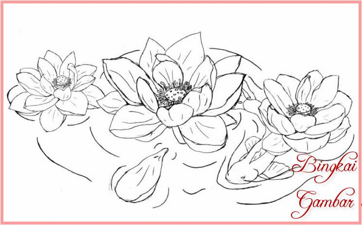 Sketsa Bunga Teratai Yang Mudah Terbaik