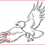 Sketsa Burung Elang Terbang