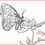 Sketsa Kupu Kupu Di Bunga