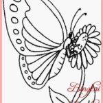 Sketsa Kupu Kupu Diatas Bunga