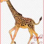 Gambar Kartun Binatang Jerapah