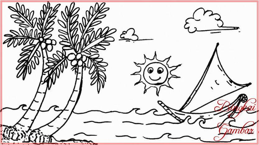 Sketsa Gambar Buah Kelapa Laut