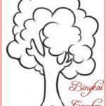Sketsa Gambar Gambar Pohon Cemara