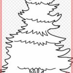 Sketsa Gambar Pohon Cemara Animasi