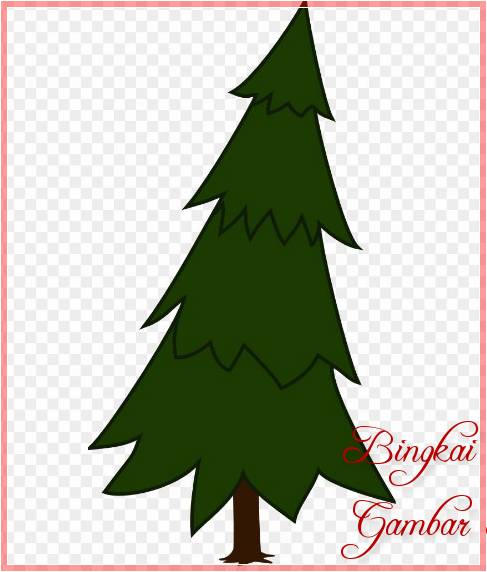 Sketsa Gambar Pohon Cemara Cartoon